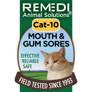 Cat-10-Mouth-and-Gum-Sores