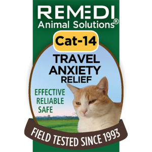 Cat-14-Travel-Anxiety-Relief