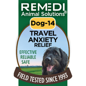 Dog-14-Travel-Anxiety-Relief