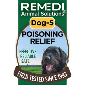 Dog-5-Poisoning-Relief