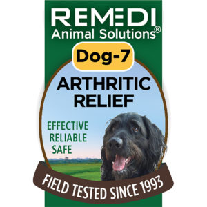 Dog-7-Arthritic-Relief